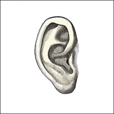 Big-Bent-Ears_cover_square
